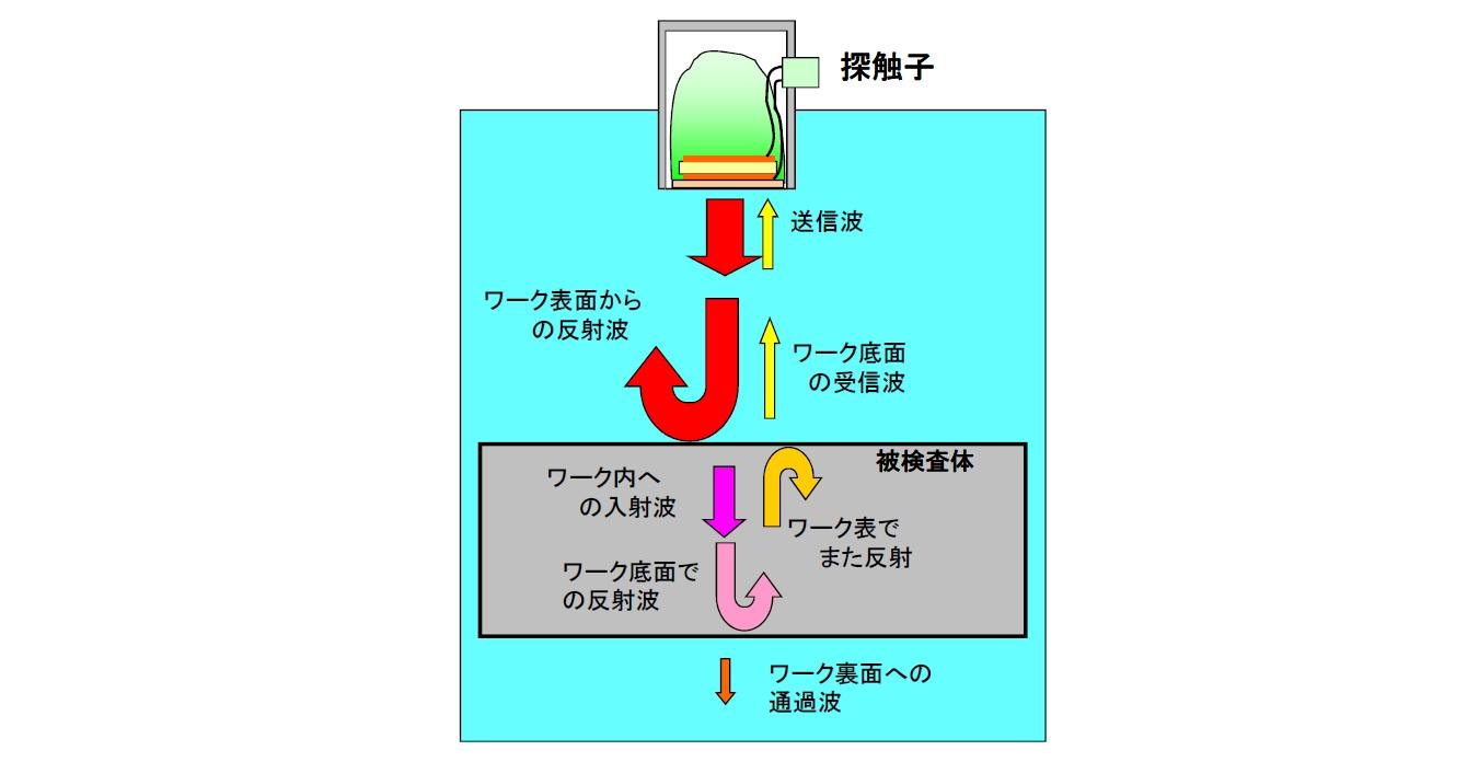超音波の特性 反射と通過画像